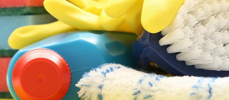 sp lschw mme unbedingt regelm ssig waschen und entsorgen putzfrau 24 ihre haushaltshilfe. Black Bedroom Furniture Sets. Home Design Ideas